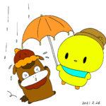 ぴよ雨降ってきた