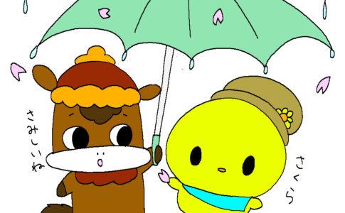 ぴよっきーとうーちゃん「雨で桜が終わっちゃうね」